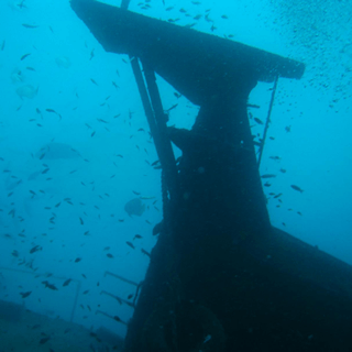 Tropical Diving Kenya Wreck